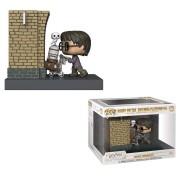Pop! Vinyl Harry Potter - Harry Potter al Binario 9 3/4 Figura Pop! Movie Moment EXC