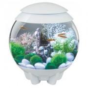 BiOrb Halo aquarium 60 liter LED maanlicht wit
