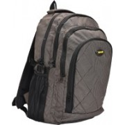 New Era damiano-br School bags men 30 L Backpack(Brown)