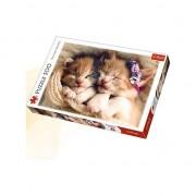 Puzzle Trefl Pisicute Somnoroase, 500 piese