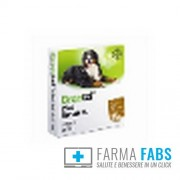 Bayer Spa (Div.Sanita'Animale) Drontal Plus Flavour Xl*2 Compresse