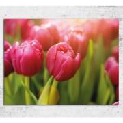 """Tablou lalele roz """"Mangaiere de primavara"""" 80 x 60 cm"""