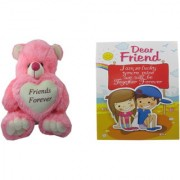 Teddy Bear Soft Toy Friend for Friends sendwitch for Sister