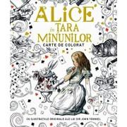 Alice in Tara Minunilor - carte de colorat/John Tenniel