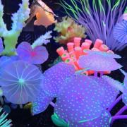 Oanda Planta Artificial De Coral Para El Tanque De Pescados, Acuario Del Ornamento Decorativo, Púrpura