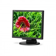 NEC Monitor Led 17'' Multisync 171m bk 1280x1024