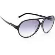 Calvin Klein Aviator Sunglasses(Grey)