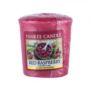 Yankee Candle Red Raspberry Duftkerze 49 g
