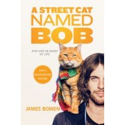 A Street Cat Named Bob: And How He Saved My Life, Paperback