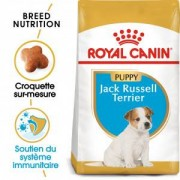 Royal Canin Breed Royal Canin Jack Russell Puppy pour chiot 1.5 kg