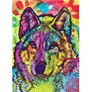 Puzzle Anatolian The Stare of the Wolf, 1000 piese