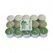 Lumanari tip pastila parfumate green tea 30/set 4h