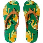 Franco Leone Women's Green Flip Flops - 4 UK/India (37 EU)