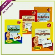 Combo Mini Set of 4 Krazy Flash Cards (Vegetables+Actions+Body Parts+Transports )