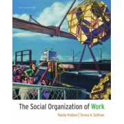 Studystore The Social Organization of Work