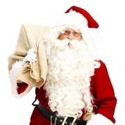 DEESEE Christmas Santa Claus Wig + Beard Set Costume Accessory Adult