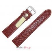 Di-Modell CAMEL 1195-2018 1195-2018