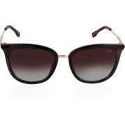 IDEE Cat-eye Sunglasses(Brown)
