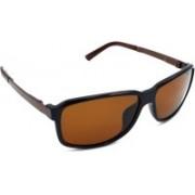 Redleaf Rectangular Sunglasses(Brown)