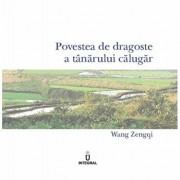 Povestea de dragoste a tanarului calugar/Wang Zengqi