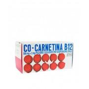 Sigmatau Ind.Farm.Riunite Spa Co-Carnetina B12 500mg + 2mg Soluzione Orosolubile 10 Flaconcini 10ml