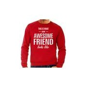 Bellatio Decorations Awesome friend / vriend cadeau sweater rood heren
