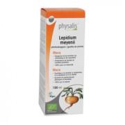 Physalis Maca Druppels Bio (100ml)
