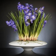 Aranjament floral LUX CYMBIDIUM, 80x95cm
