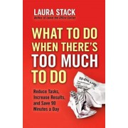 What to Do When There's Too Much to Do: Reduce Tasks, Increase Results, and Save 90 a Minutes Day, Paperback