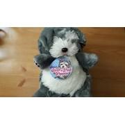 Shhh! Sneak A Peek Puppies Schnauzer by Puppy Sneak A Peek