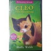Cleo o pisicuta curioasa