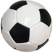 Dee Mannequin White and Black Football - Size 5 Diameter 21cm (Pack of 1 Multicolour)
