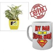 ES HYBRIDE WHITE LUCKY MONEY PLANT With Freebies Mug