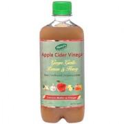 Shreys Apple Cider Vinegar with Ginger Garlic Lemon Honey 500 ml