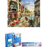 Crafterman™ Diamond Painting Pakket Volwassenen - Prachtige straat met huizen - 50x40cm - volledige bedekking - vierkante steentjes - 44 verschillende kleuren - hobby pakket - Met tijdelijk 2 E-Books
