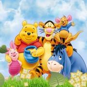Set pentru botez cu Winnie the Pooh, disponibil în 3 variante de grafică