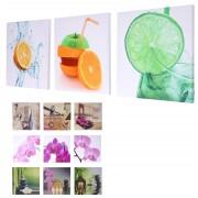 Leinwandbild T376, Wandbild Keilrahmenbild Kunstdruck, 3-teilig 150x50cm ~ Variantenangebot