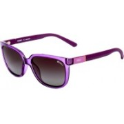 Enrico Wayfarer Sunglasses(Violet)