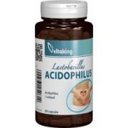 Acidophilus Vitaking 60cps