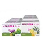 Sensilab Hepafar 3měsíční DETOX JATER Očista jater a regenerace 10x silnější účinek Hepafar Forte 6x 30 kapslí, Hepafar Fibers 6x 15 sáčků