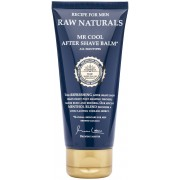 Raw Naturals Brewing Company Raw Naturals Mr Cool After Shave Balm 100 ml