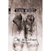 Omul din Castranova - Eugen Negrici