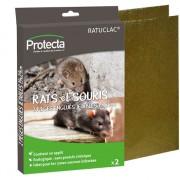 PROTECTA Plaque Piège englué rats - souris - Par 2