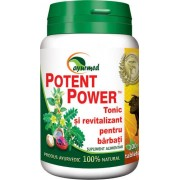 Potent Power 100tb Star International