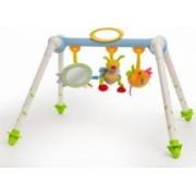 Jucarie bebelusi Taf Toys Foldable Play Centre - Walking Bee