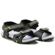 Lancer Men MEHNDI-BLACK-PG Sandals