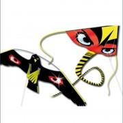 Reserve vlieger Terror Hawk en Kite