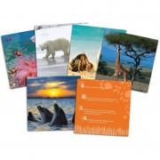 Joc Lumea animalelor salbatice Learning Resources