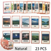 richardy 23pcs/Set Natural Kids Gifts English Flash Cards Pocket Card Educational Learning Baby Toys for Children pre-Kindergarten