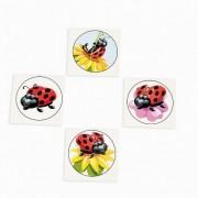 Ladybug Tattoo Assortment (72 Pc)